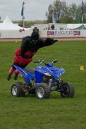 An unfortunate quadbike gets attacked by a gorilla wearing a bra. Only at Truckfest folks! Get your tickets on line for next year IMG_6008-1pub